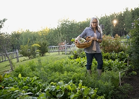 Why gardening is so good for you