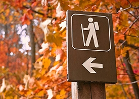 Best Hiking Trails for Fall